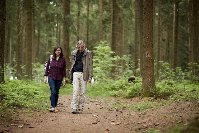 Kati-Naumann-Spaziergang-im-Wald